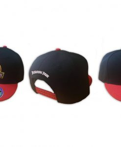 x_indie0927 Jurassic Park Snap Back Cap Logo